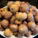 Bletted medlars on a plate