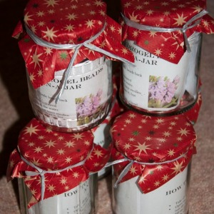 Hyacinth Jars, ready to give