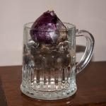 Hyacinth tankard