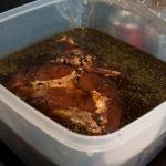 Ham in brine after 5 days
