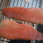 Trout fillets, loaded in the smoker