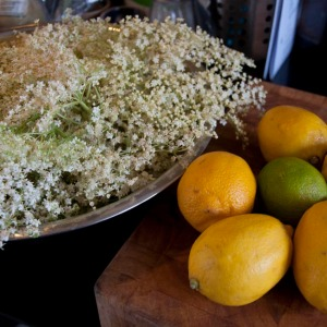 Elderflowers and citrus fruit