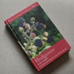 River Cottage Handbook No.7 - Hedgerow