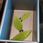 Bay leaves & juniper berries