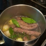 Stock, before simmering
