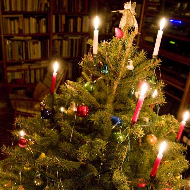 Candles In Christmas Trees