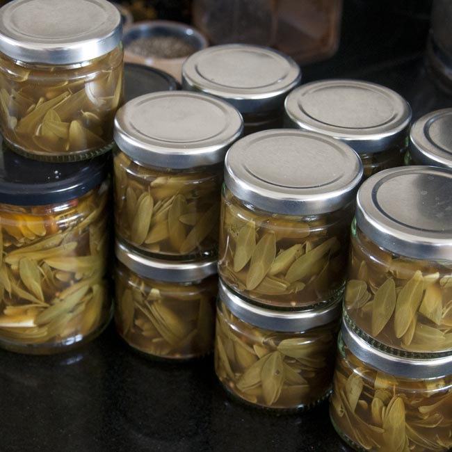 Filled jars of pickled ash keys