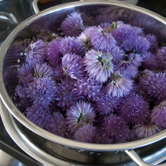 Wash and dry your chive flowers