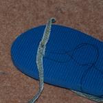 Fixing toe strap (2)
