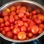 Fresh, ripe, home-grown tomatoes