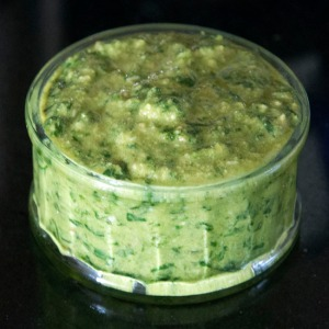 Prepared fresh pesto