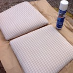 Treat seat pads with stain-repellant spray