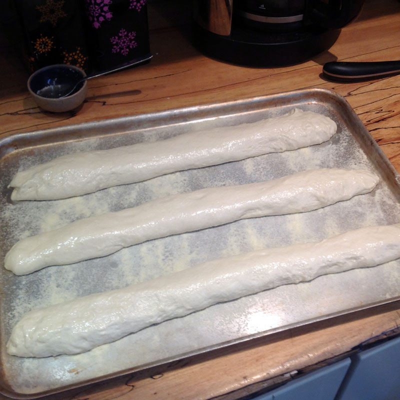 Shaped loaves on baking sheet